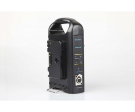 Beillen BLB1703-AN2E Gold Mount Li-ion charger